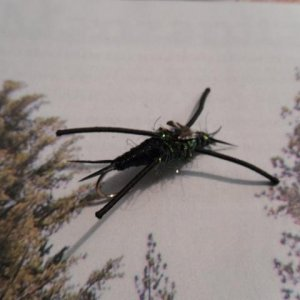 My first stonefly. Taken from Kauffmann's pattern and adapted slightly to my ghetto materials. (Pic 4)